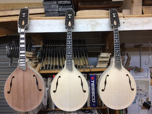 Creek Series: A-Style Mandolins small A5 in the white