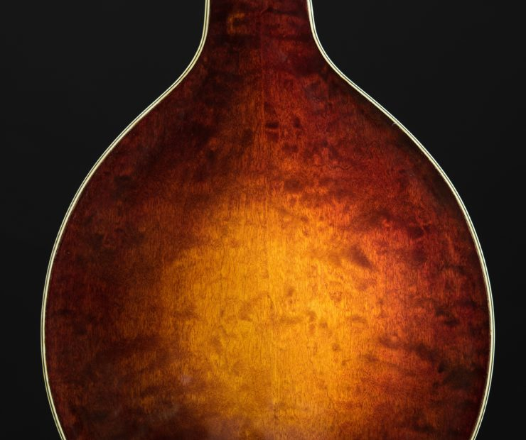 Creek Series: A-Style Mandolins client kevin n creek a 03 740x620