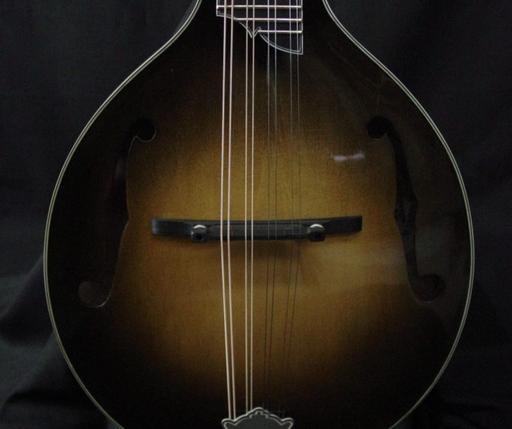 Creek Series: A-Style Mandolins clients cj lewandowski gus 01 740x620