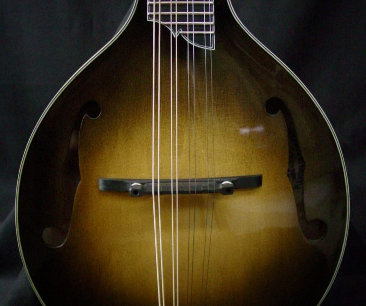 Creek Series: A-Style Mandolins clients cj lewandowski gus 15 740x620
