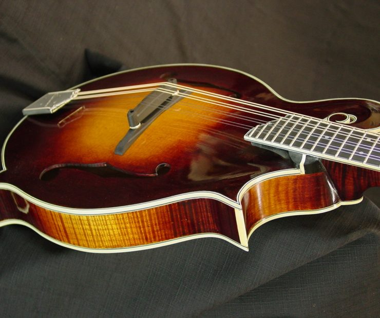 river f5 mandolin Mike P. demo stock f5 014 016 001 740x620