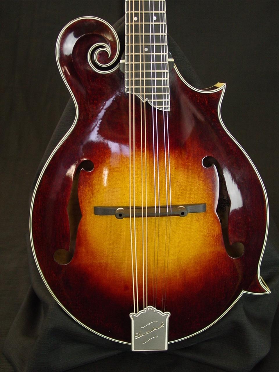 river f5 mandolin Mike P. demo stock f5 014 016 002