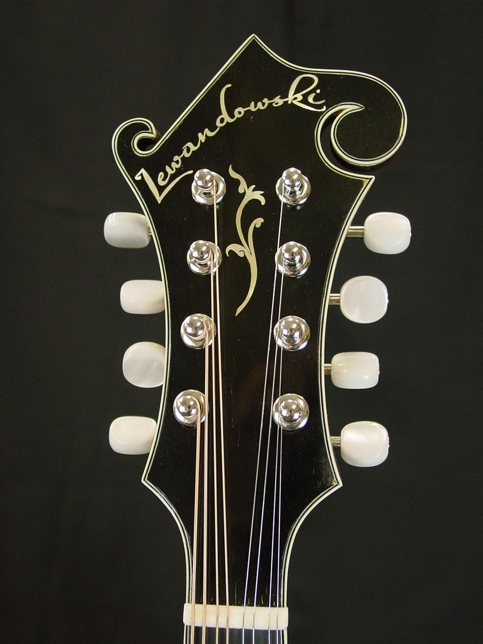 river f5 mandolin Mike P. demo stock f5 014 016 003