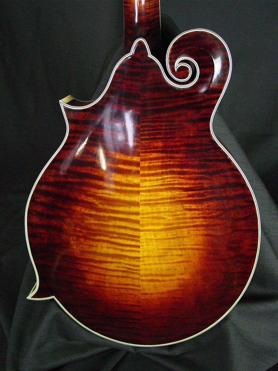 river f5 mandolin Mike P. demo stock f5 014 016 005