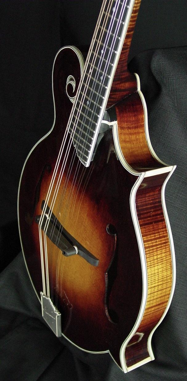river f5 mandolin Mike P. demo stock f5 014 016 007