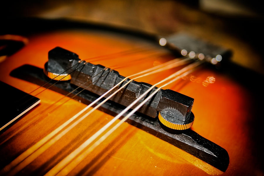 action How High Should Your Action Be? mandolin actioon tune standin 2